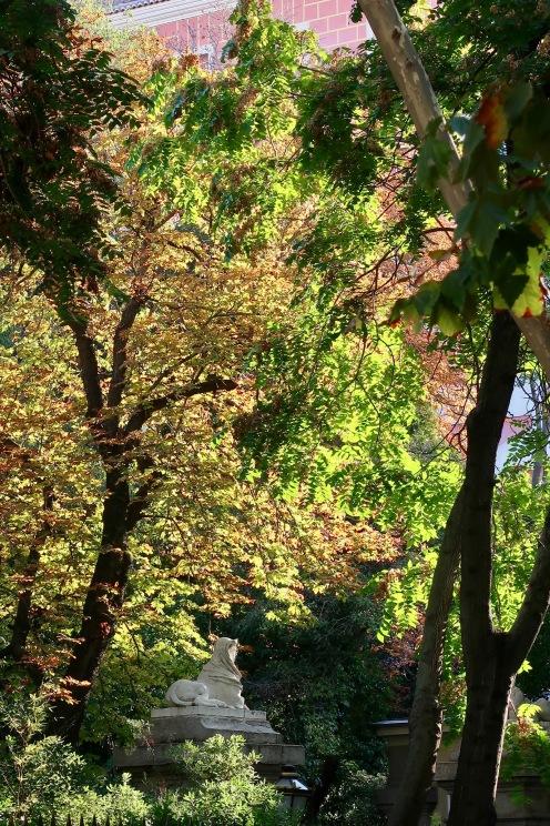Beautiful Autumn Colors.