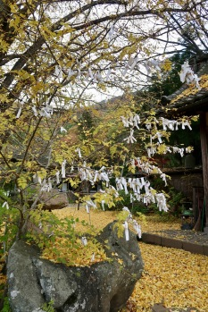 At Joko-ji temple you pray for love and good health, these are prayers for good health against cancer.