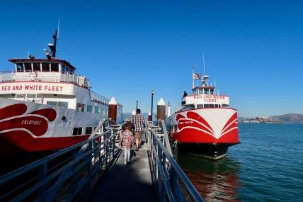 Fantastic harbour tour, very informative