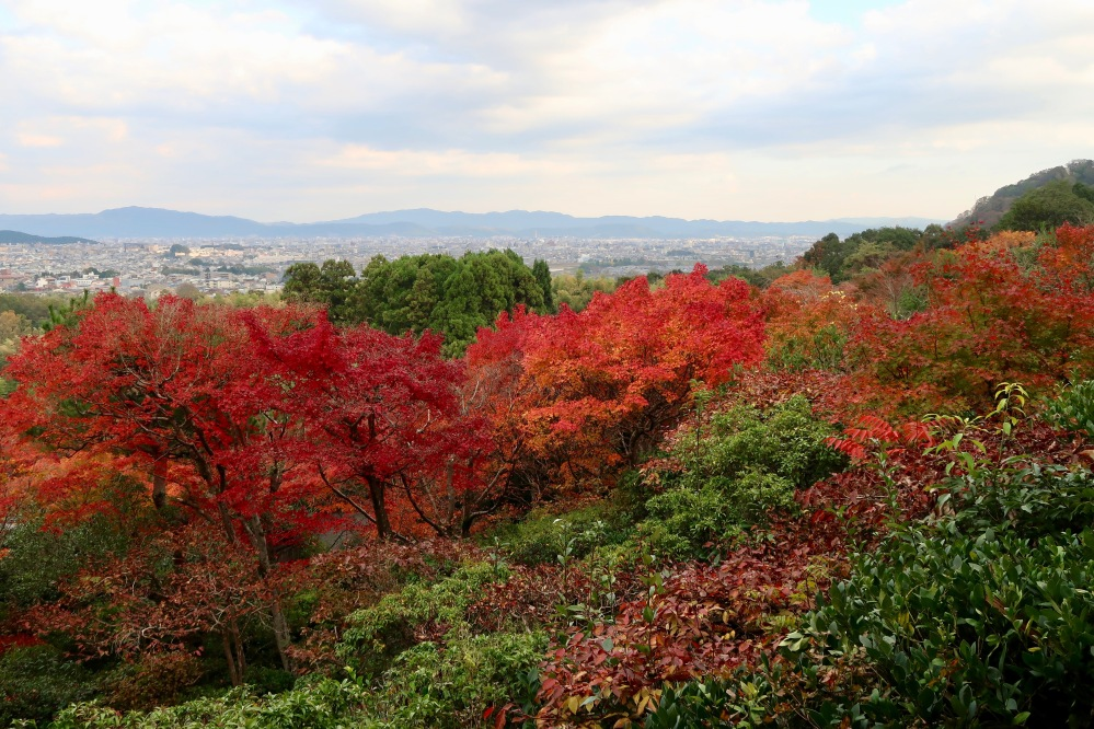 View over Kyoto 2