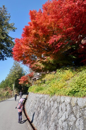 Walking the road in Takayama